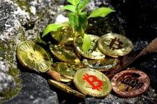 Bitcoin DCA